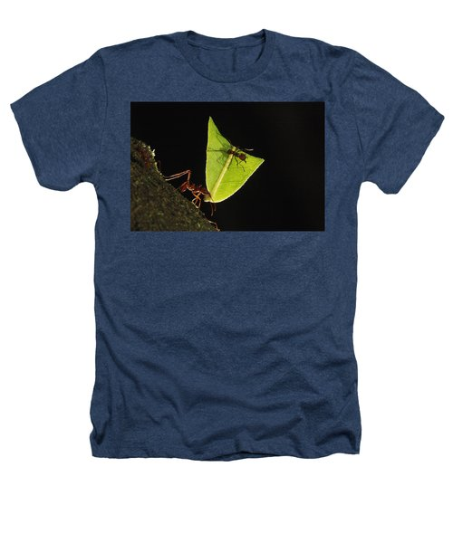 Leafcutter Ant Atta Sp Carrying Leaf Heathers T-Shirt by Cyril Ruoso
