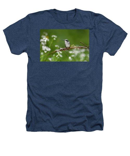 Meadow Hummingbird Heathers T-Shirt