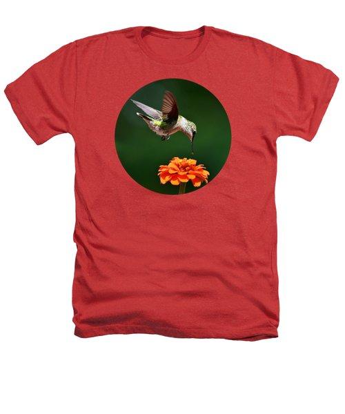 Hummingbird Bullseye Heathers T-Shirt by Christina Rollo
