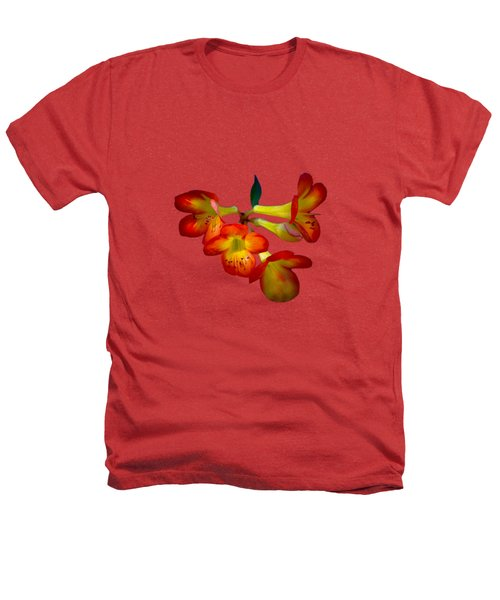 Color Burst Heathers T-Shirt by Mark Andrew Thomas