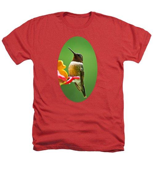 Rainy Day Hummingbird Heathers T-Shirt by Christina Rollo
