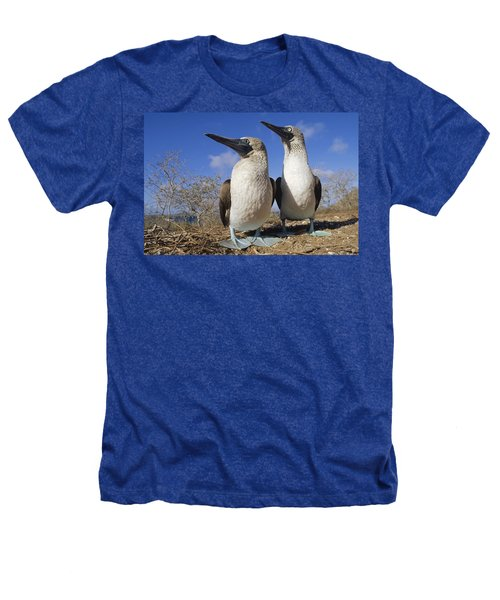 Blue-footed Booby Courting Couple Heathers T-Shirt by Tui De Roy
