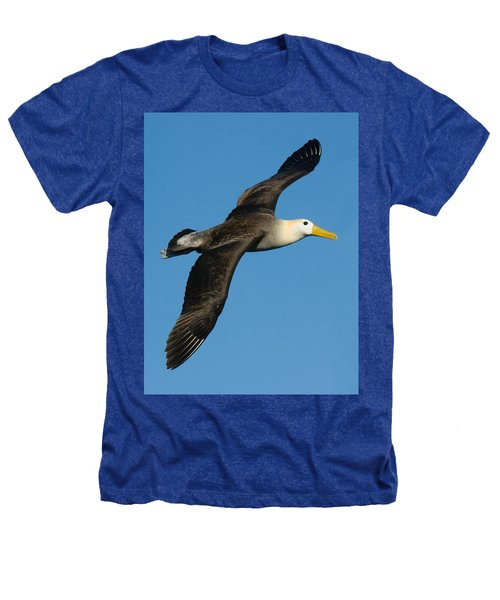 Waved Albatross Diomedea Irrorata Heathers T-Shirt by Panoramic Images