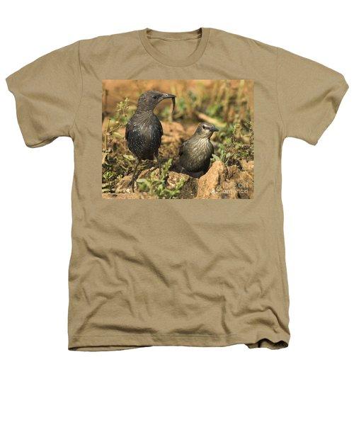 Starling Estornino Heathers T-Shirt