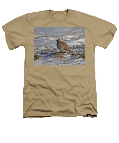 Winter Bird Heathers T-Shirt by Jeff Swan
