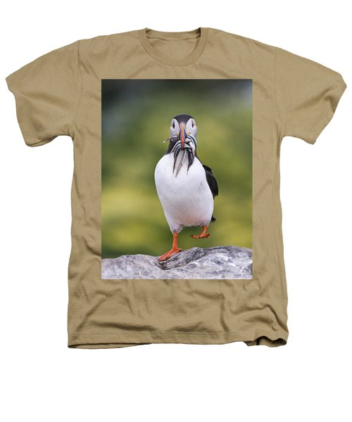 Atlantic Puffin Carrying Greater Sand Heathers T-Shirt by Franka Slothouber