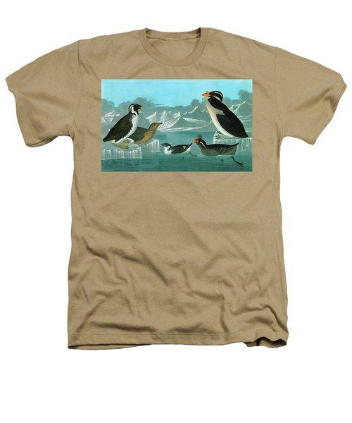 Audubon Auks Heathers T-Shirt