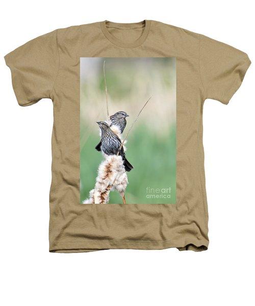 Blackbird Pair Heathers T-Shirt by Mike  Dawson