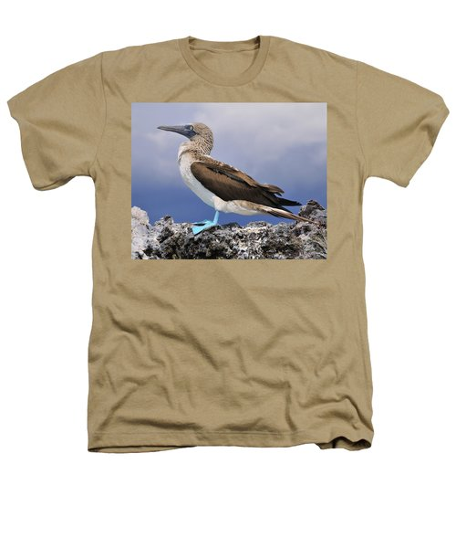 Blue-footed Booby Heathers T-Shirt by Tony Beck