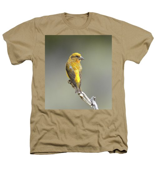 Common Crossbill Loxia Curvirostra Heathers T-Shirt