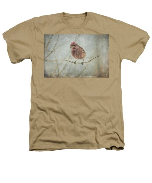 Early Spring Visitor Heathers T-Shirt