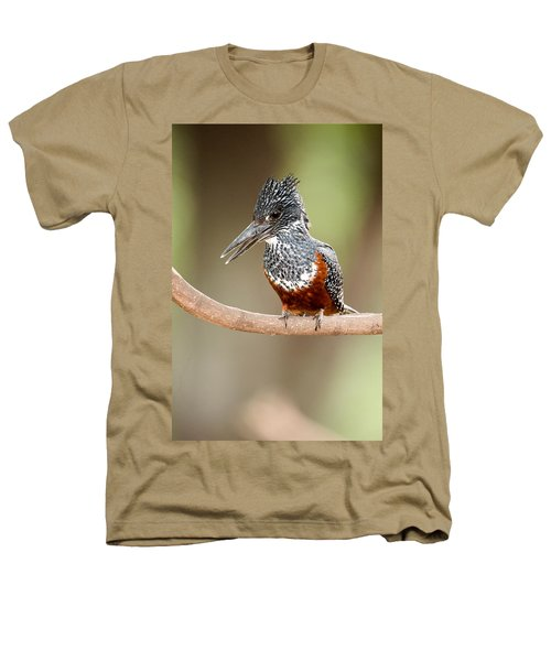 Giant Kingfisher Megaceryle Maxima Heathers T-Shirt by Panoramic Images