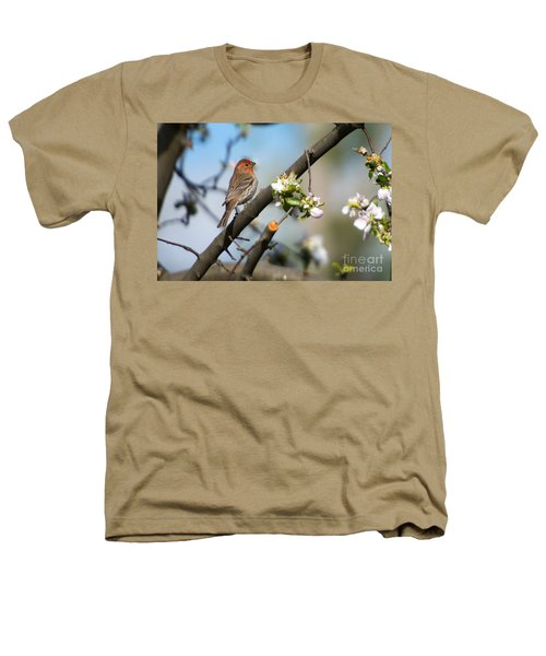 House Finch Heathers T-Shirt