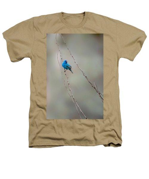 Indigo Bunting Heathers T-Shirt by Bill Wakeley