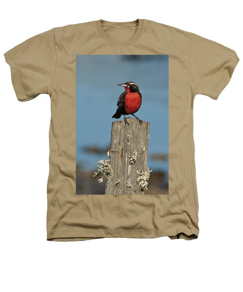 Male Long-tailed Meadowlark On Fencepost Heathers T-Shirt