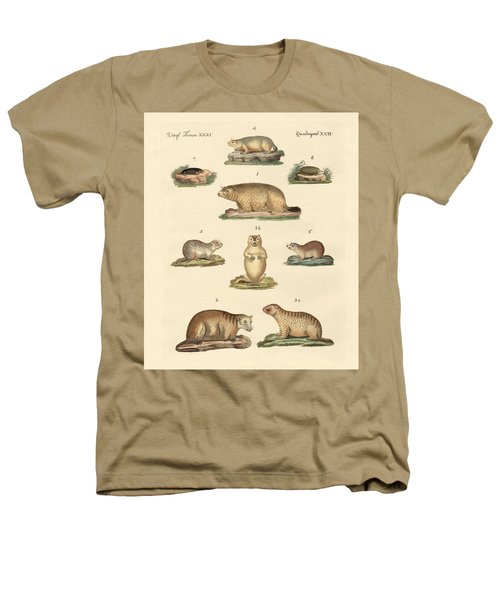 Marmots And Moles Heathers T-Shirt