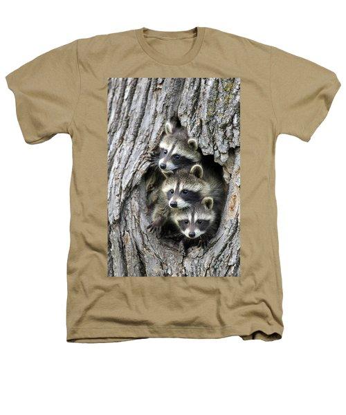 Raccoon Trio At Den Minnesota Heathers T-Shirt by Jurgen & Christine Sohns
