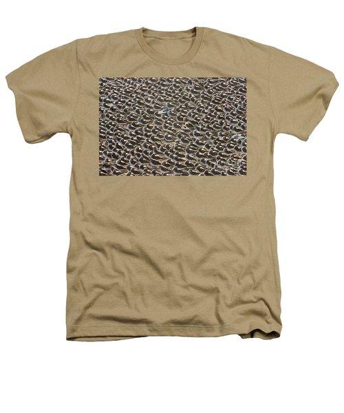 Semipalmated Sandpipers Sleeping Heathers T-Shirt
