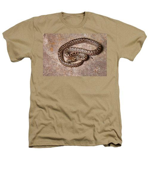 Spotted Python Antaresia Maculosa Heathers T-Shirt