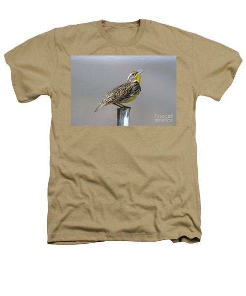 The Meadowlark Sings  Heathers T-Shirt
