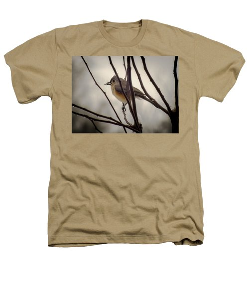 Tufted Titmouse Heathers T-Shirt by Karen Wiles