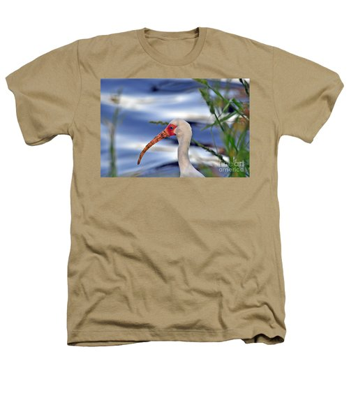 Intriguing Ibis Heathers T-Shirt by Al Powell Photography USA