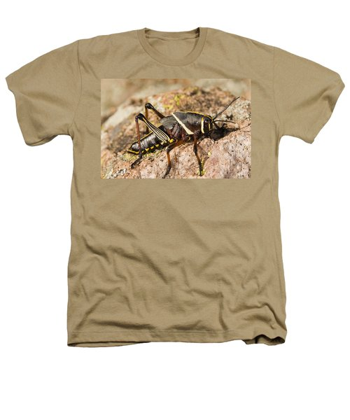 A Colorful Lubber Grasshopper Heathers T-Shirt by Jack Goldfarb