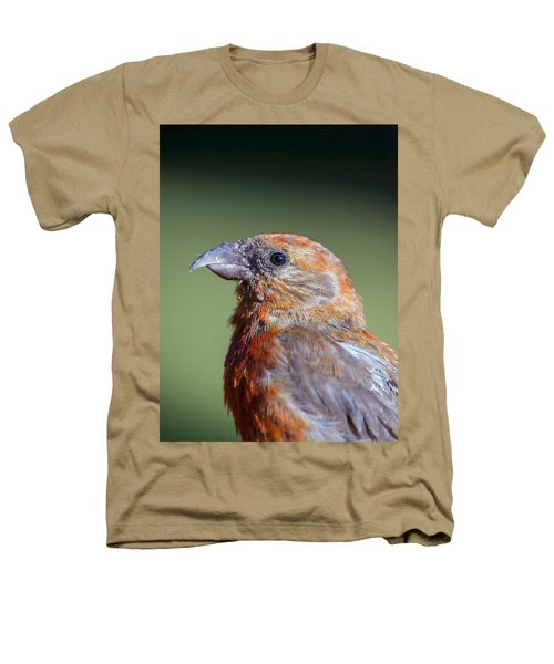 Red Crossbill Heathers T-Shirt by Derek Holzapfel