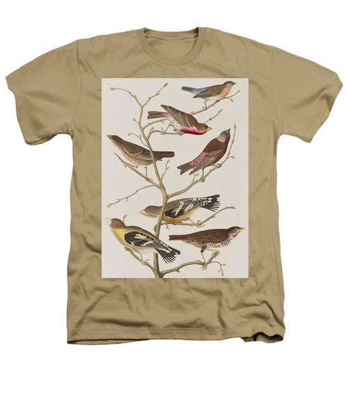 Finches Heathers T-Shirt