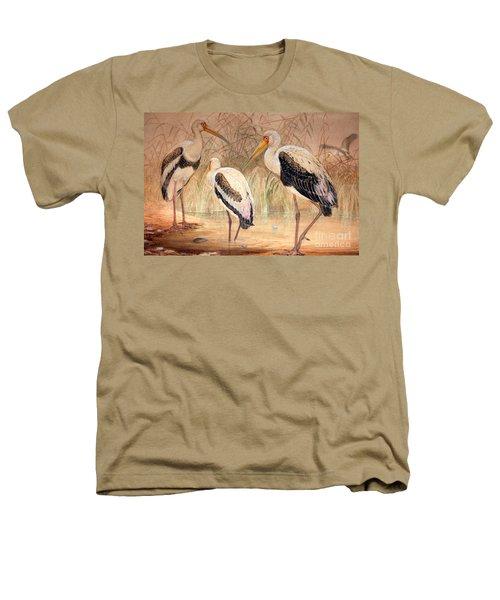 African Tantalus Pseudotantalus Ibis Heathers T-Shirt