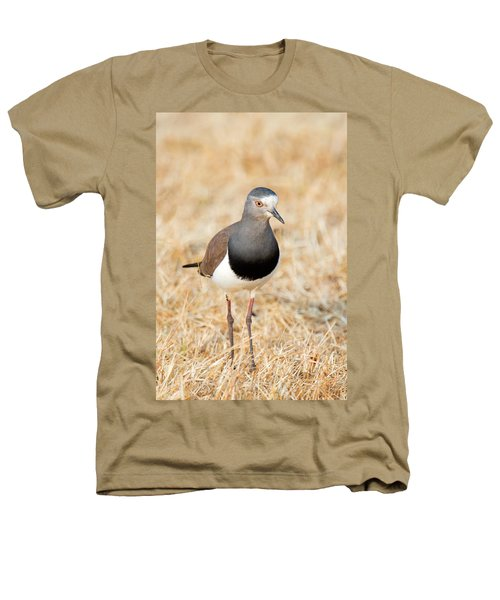African Wattled Lapwing Vanellus Heathers T-Shirt