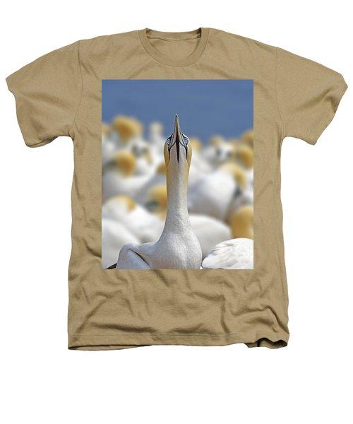 Ahead Heathers T-Shirt by Tony Beck