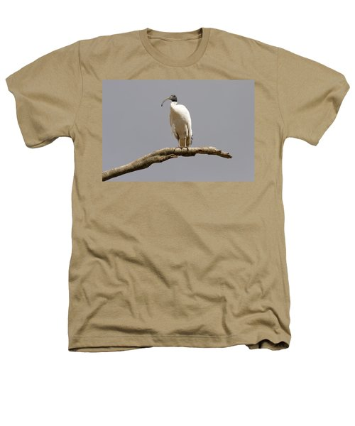 Australian White Ibis Perched Heathers T-Shirt