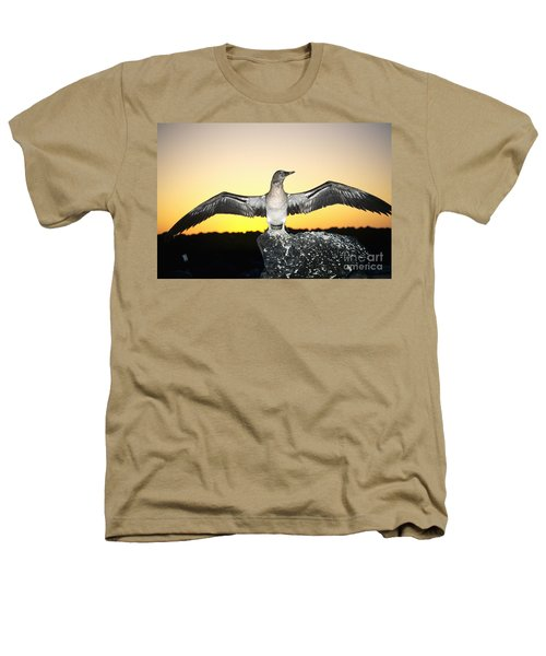 Booby At Sunset Heathers T-Shirt by Dave Fleetham - Printscapes