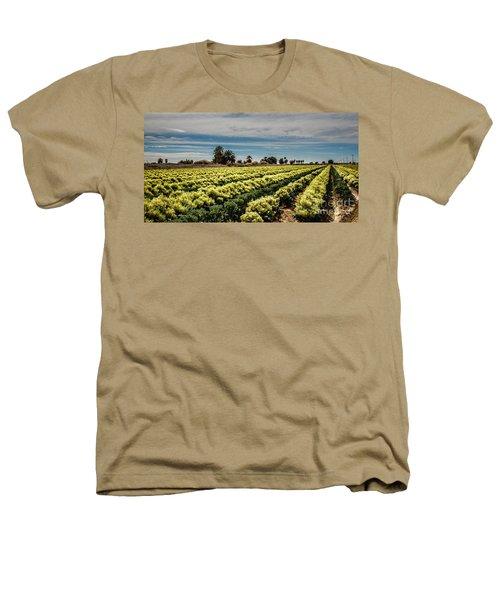 Broccoli Seed Heathers T-Shirt by Robert Bales
