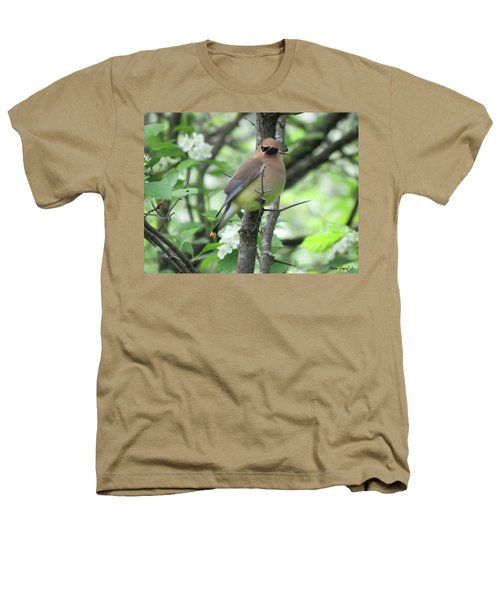 Cedar Wax Wing Heathers T-Shirt by Alison Gimpel