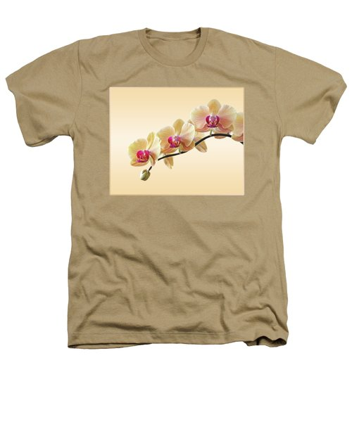 Cream Delight Heathers T-Shirt by Gill Billington