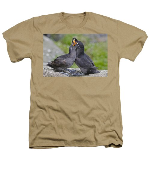 Crested Auklet Pair Heathers T-Shirt