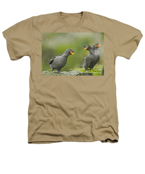 Crested Auklets Heathers T-Shirt