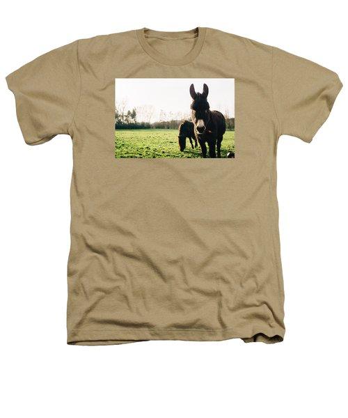 Donkey And Pony Heathers T-Shirt by Pati Photography