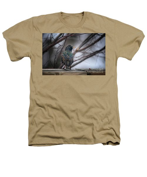 European Starling In Non Breeding Colors Heathers T-Shirt