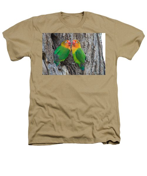 Fischers Lovebird Agapornis Fischeri Heathers T-Shirt by Panoramic Images