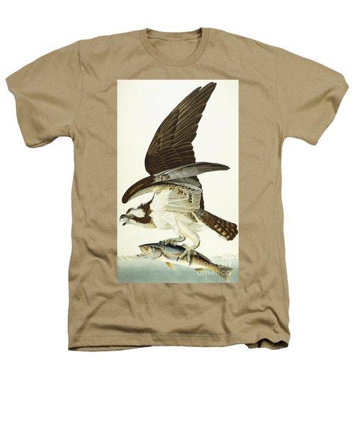 Fish Hawk Heathers T-Shirt by John James Audubon