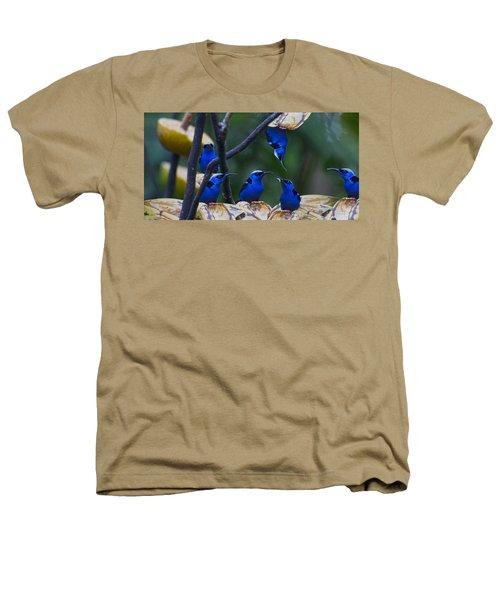 Honeycreeper Heathers T-Shirt by Betsy Knapp