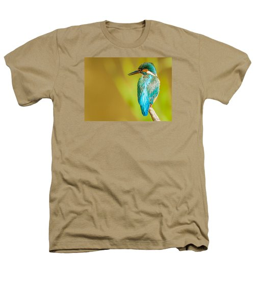 Kingfisher Heathers T-Shirt by Paul Neville
