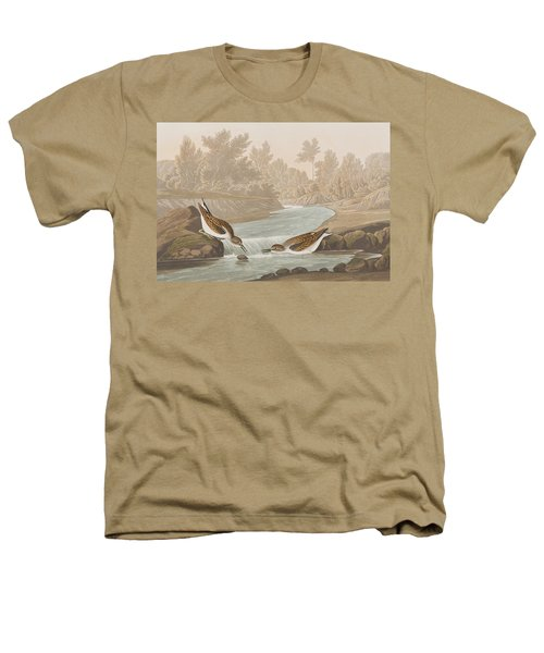 Little Sandpiper Heathers T-Shirt by John James Audubon