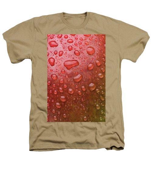 Mango Skin Heathers T-Shirt by Steve Gadomski