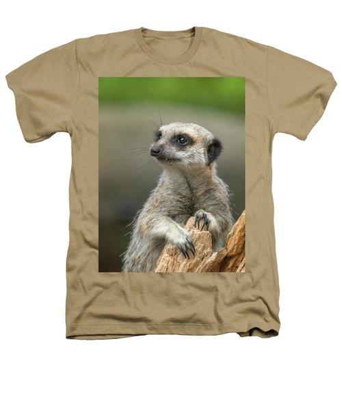 Meerkat Model Heathers T-Shirt