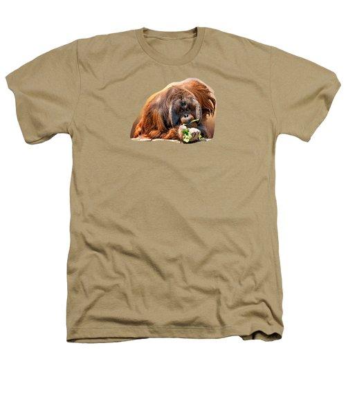 Orangutan Heathers T-Shirt by Maria Coulson