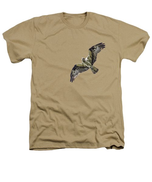 Osprey Overhead Heathers T-Shirt by Nick Collins